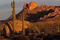 /images/133/2011-05-22-supers-morning-71281.jpg - #09307: Morning in Superstitions … May 2011 -- Superstitions, Arizona
