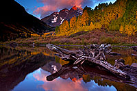/images/133/2011-10-04-maroon-log-104227.jpg - #09574: Sunrise reflection of a tree log and Maroon Bells in Colorado … October 2011 -- Maroon Bells, Colorado