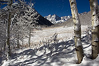 /images/133/2011-10-27-maroon-snowy-trees-109624.jpg - #09757: Snowy Trees in Maroon Bells, Colorado … October 2011 -- Maroon Bells, Colorado
