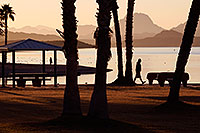 /images/133/2012-01-19-havasu-sunrise-walk-140136.jpg - #10004: Morning in Lake Havasu City, Arizona … January 2012 -- Beach Park, Lake Havasu City, Arizona