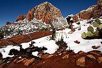 /images/133/2012-03-20-sedona-snow-cactus-149975.jpg - #10150: Snow in Sedona … March 2012 -- Thunder Mountain, Sedona, Arizona