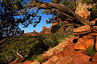 /images/133/2012-04-17-sedona-thunder-154964.jpg - #10220: Images of Sedona … April 2012 -- Thunder Mountain, Sedona, Arizona