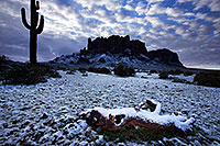 /images/133/2013-02-21-supers-log-snow-26555.jpg - #10803: Snow in Superstitions … February 2013 -- Lost Dutchman State Park, Superstitions, Arizona