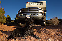 /images/133/2013-11-08-moab-mtns-kiera-1d4_4214.jpg - #11370: Kiera (Terrier, 1 year old) in Moab … November 2013 -- Moab, Utah