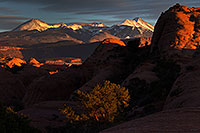 /images/133/2013-11-09-la-sal-mount-1d4_4435.jpg - #11390: La Sal Mountains in Moab … November 2013 -- La Sal Mountains, Moab, Utah