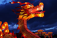 /images/133/2014-01-31-fhills-chin-new-5d2_0045.jpg - #11713: Dragon at Chinese New Year Lantern Culture and Arts Festival 2014 … January 2014 -- Fountain Hills, Arizona