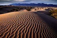 /images/133/2016-04-26-dv-mesquite-6-9-1dx_11193.jpg - #12958: Death Valley, California … April 2016 -- Mesquite Sand Dunes, Death Valley, California