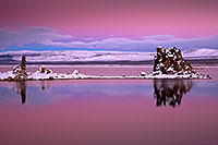 /images/133/2017-01-13-mono-reflect-5d4_1230.jpg - #13482: Mono Lake, California … January 2017 -- Mono Lake, California