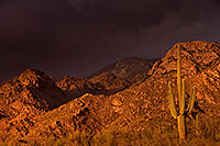 /images/133/2017-07-10-catalina-monsoon-1x_56303.jpg - #13927: Santa Catalina Mountains … July 2017 -- Santa Catalina Mountains, Arizona