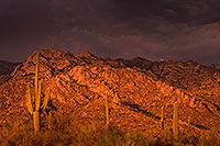 /images/133/2017-07-10-catalina-monsoon-1x_56337.jpg - #13928: Santa Catalina Mountains … July 2017 -- Santa Catalina Mountains, Arizona