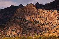 /images/133/2017-07-12-catalina-mtns-5dsr_0014.jpg - #13939: Santa Catalina Mountains … July 2017 -- Santa Catalina Mountains, Arizona