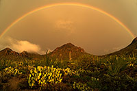 /images/133/2017-07-22-tucson-mtns-7-a7_0486.jpg - #13945: Rainbow and fog during monsoon rain in Tucson Mountains … July 2017 -- Tucson Mountains, Arizona