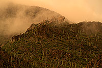/images/133/2017-07-22-tucson-mtns-a7_0507.jpg - #13946: Fog during monsoon rain in Tucson Mountains … July 2017 -- Tucson Mountains, Arizona