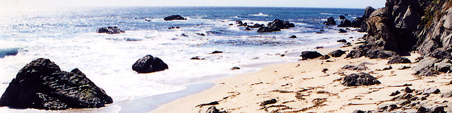 /images/500/2001-07-cali-bigsur-beach-sp.jpg - #00794: Images of Big Sur … July 2001 -- Big Sur, California