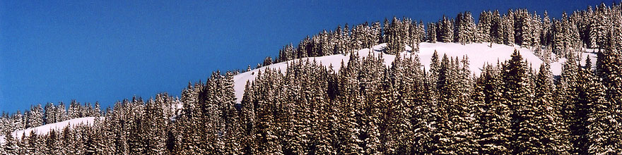 /images/500/2005-03-wolfcreek-top-t2-sp.jpg - #02601: March at Wolf Creek Pass … March 2005 -- Wolf Creek Pass, Colorado