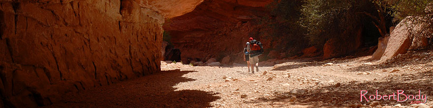 /images/500/2008-04-06-hav-can-1269sp.jpg - #05100: Hikers along Havasupai Trail, in flash flood area of Havasu Canyon … April 2008 -- Havasupai Trail, Havasu Falls, Arizona