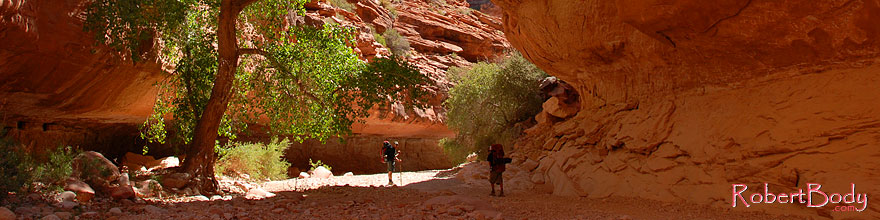 /images/500/2008-04-18-hav-trail-2630sp.jpg - #05266: Hikers along Havasupai Trail, 2 miles from Supai … April 2008 -- Havasupai Trail, Arizona