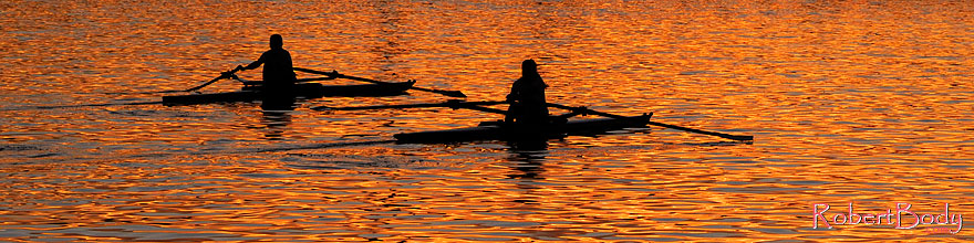 /images/500/2008-11-18-tempe-sculling-49802sp.jpg - #06123: Scullers at Tempe Town Lake … November 2008 -- Tempe Town Lake, Tempe, Arizona