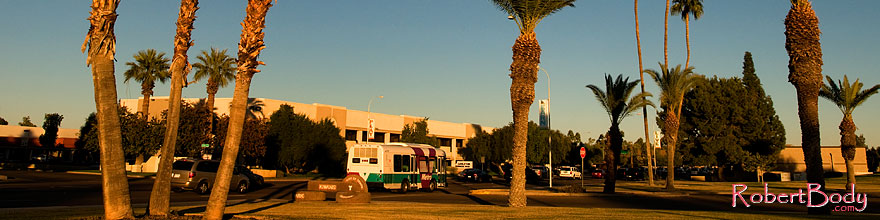 /images/500/2008-12-09-tempe-kiwanis-palms-60978sp.jpg - #06443: Metro bus and traffic at Kiwanis Park … December 2008 -- Kiwanis Park, Tempe, Arizona