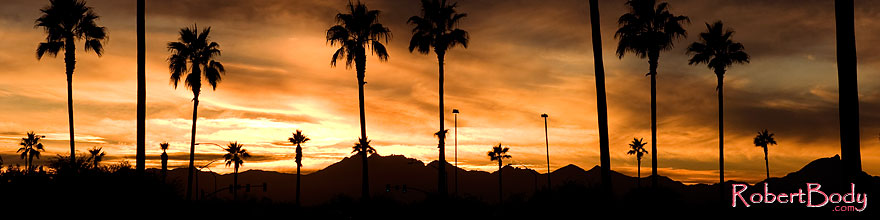 /images/500/2008-12-11-smountain-palms-61485sp.jpg - #06404: Sunset over South Mountain … December 2008 -- South Mountain, Phoenix, Arizona
