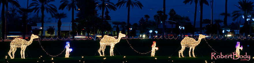 /images/500/2008-12-14-mesa-temple-caravan-64040sp.jpg - #06458: Camel Caravan - Mesa Temple Garden Christmas Lights Display … December 2008 -- Mesa Arizona Temple, Mesa, Arizona