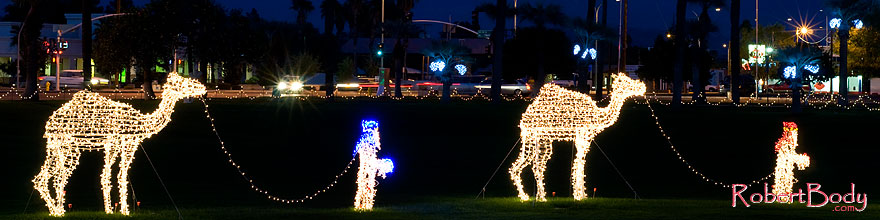 /images/500/2008-12-14-mesa-temple-caravan-64063sp.jpg - #06511: Camel Caravan - Mesa Temple Garden Christmas Lights Display … December 2008 -- Mesa Arizona Temple, Mesa, Arizona