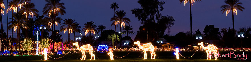 /images/500/2008-12-15-mesa-temple-caravan-64183sp.jpg - #06522: Mesa Temple Garden Christmas Lights Display … December 2008 -- Mesa Arizona Temple, Mesa, Arizona