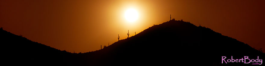 /images/500/2011-05-12-supers-2cactus-68200-sp.jpg - #09235: Sunset in Superstitions … May 2011 -- Superstitions, Arizona